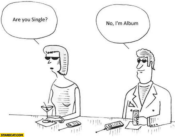 are-you-single-no-im-album.jpg
